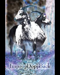 improp-dopp-back